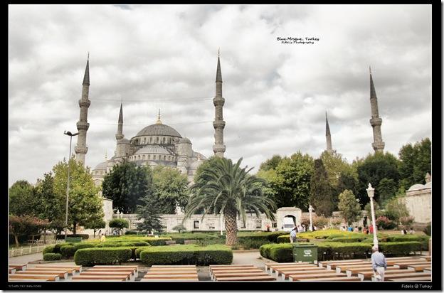 Turkey 115