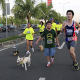Pet Express Doggie Run 2012 Philippines. Jpg (88).JPG