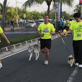 Pet Express Doggie Run 2012 Philippines. Jpg (67).JPG