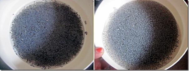 Falooda seeds