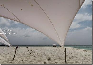 馬爾地夫 野餐島 浮潛 (40)