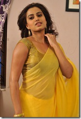 Dimple_chopda_new_exclusive_pic