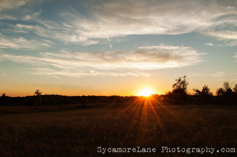 SycamoreLane Photography--7-2