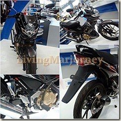 suzuki motorcycle (2)