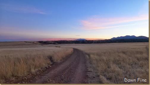 San Rafael Grasslands_048