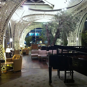 Istanbul's first class lounge is the nicest I've seen anywhere. by Chuck Holton - Buildings & Architecture Public & Historical
