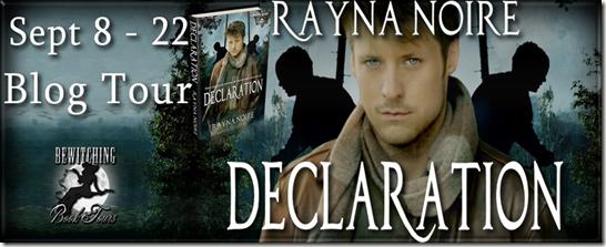 Declaration Banner 851 x 315