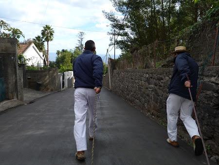 Atractii turistice Madeira: cu sania prin Funchal