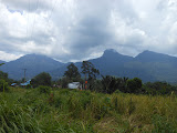 The Gunung Bawang mountain range seen from Sungai Betung (Dan Quinn, March 2013)