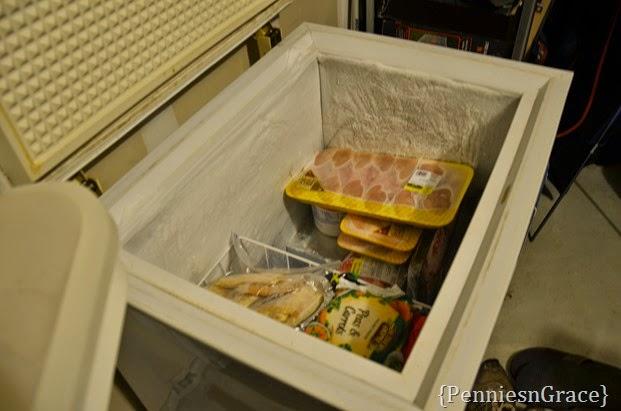 freezer friend (2)