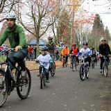CycleofLife-082.jpg
