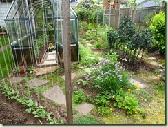 VeggieGarden2