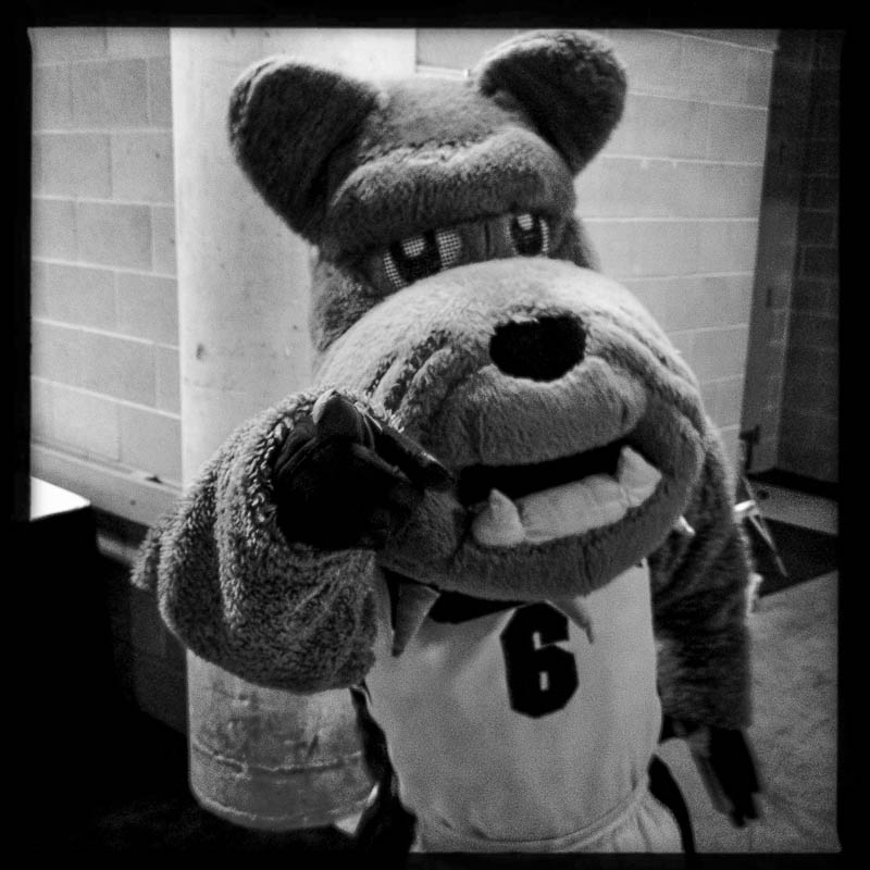 Spike the Bulldog, Gonzaga