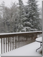 snow day 05
