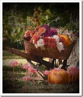 Verve_Nov_Week3_inspiration