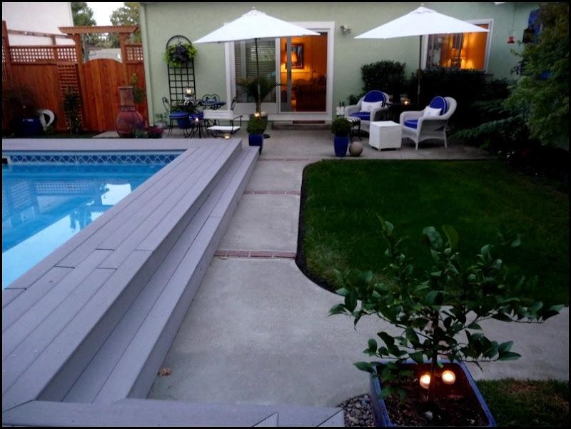 Backyard 022 (800x600)