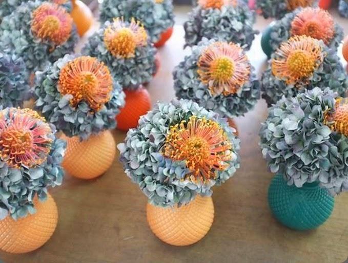 Botanical brouhaha pincushion protea leucospermum - Flowers by bornay ...