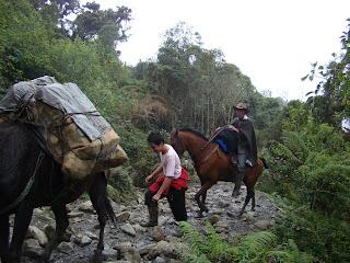 Colombia, Nevados: Nevado del Tolima (por las Perlas)