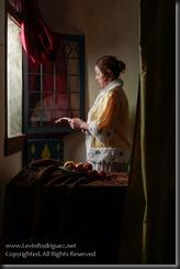 Blog2014__20130308_Vermeer-TheLetterReader