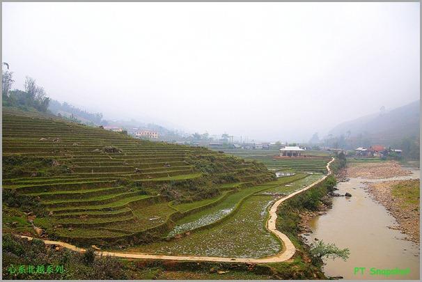 Rice Terraces at Ta Van