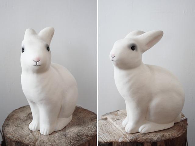 kaninene1