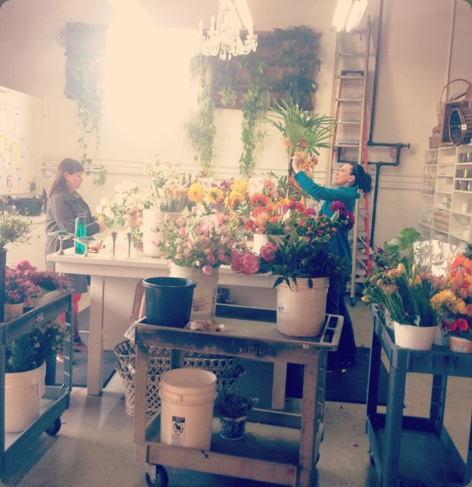 studio tumblr_mjx8nw6jrk1qdbgnyo1_1280 isari flower studio