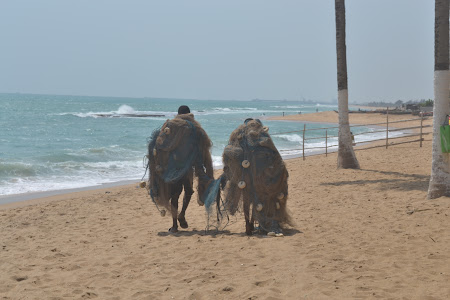 Voluntar in Africa: pescari Togo