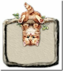 !!!kittyhangingaround!!!