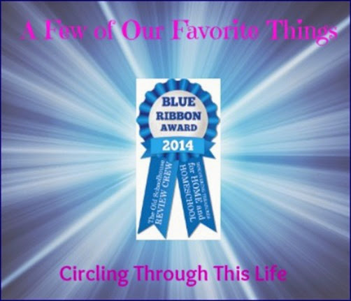 A Few Favorite Review Crew Products from 2014 ~ Circling Through This Life