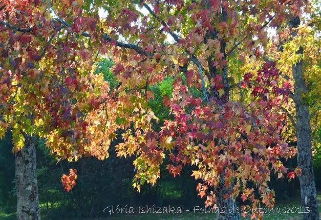 Glória Ishizaka - Outono 2013 - 66