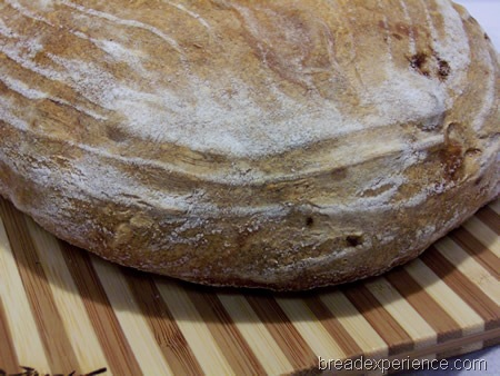 normandy-apple-bread 020