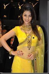 Anjana-Sukhani-sexy insaree