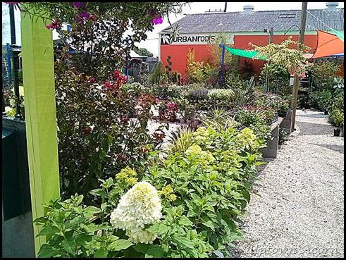 urban-roots-garden-center-new-orleans-la