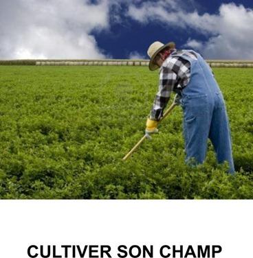 cultiver son champ
