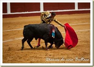 Toros_León-17