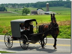 amish for blog