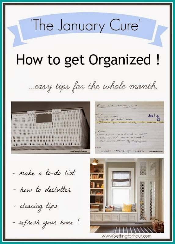 The January Cure  - Easy Tips to Get Organized!