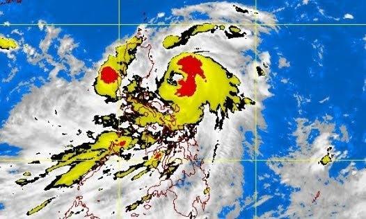 Tropica Storm Pedring