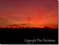 Solnedgang over Vigsnæs