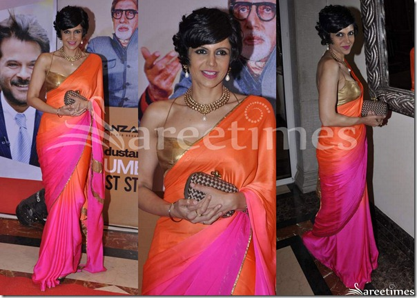 Mandira_Bedi_Dual_Color_Saree