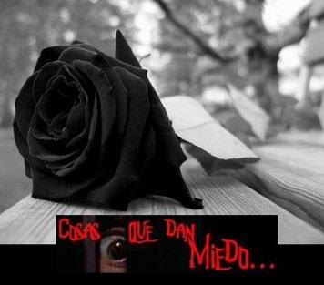 FloresNegras-CQdM-0700