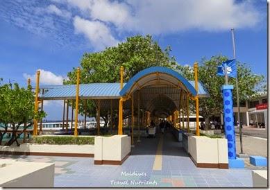 馬爾地夫 交通渡輪計程車飛機公車 (3)