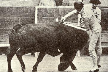 Manolete Estocada Alfredo David (Los heterodoxos) 001