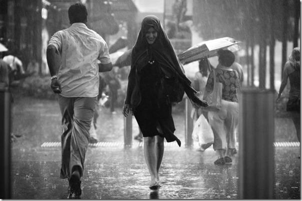 Lindas fotos da chuva (7)