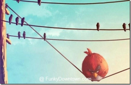 funny-angry-birds-17