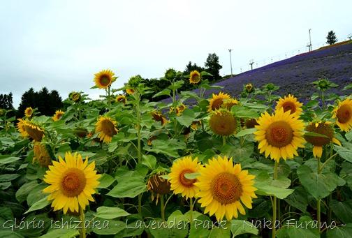 Glória Ishizaka - Naka Furano - Hokkaido 56