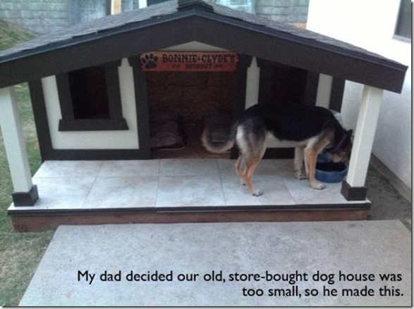 awesome-pet-owners-6