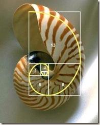 Fibonacci03