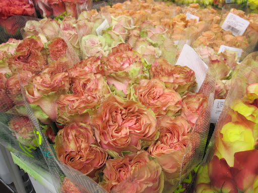 Dozens of colors of roses are in the store, but look closely at other details -- like the way the petals lay and the way the flower opens.