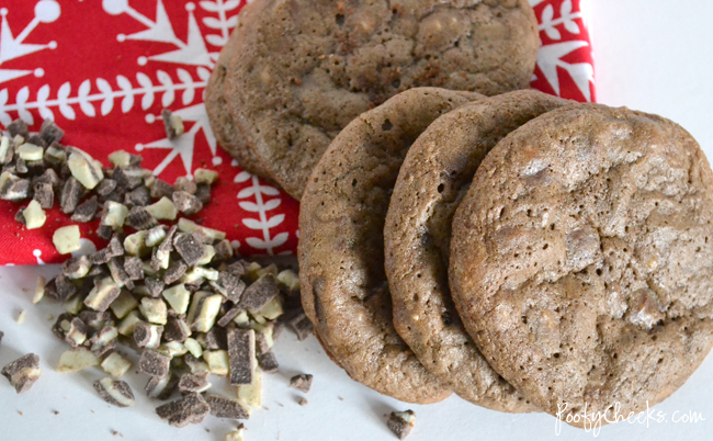 Double Rich Chocolate Mint Chip Cookie Recipe